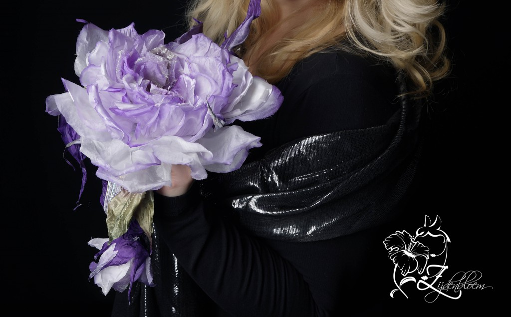 lilovaya roza