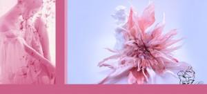 bloem 2 collage